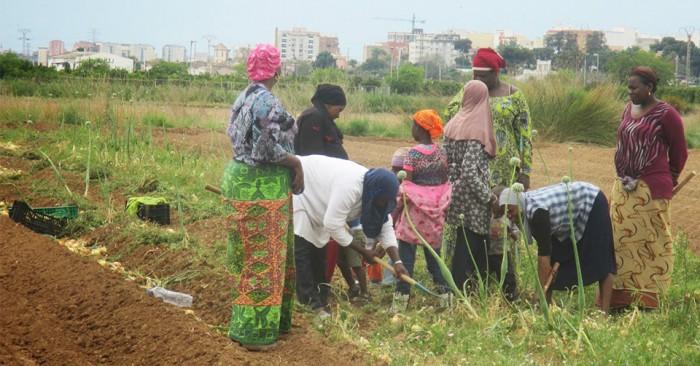 Dones africanes a l'Horta