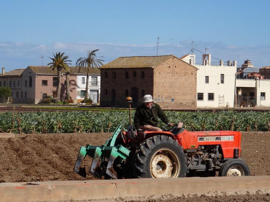 Diagnóstico del estado de las tierras de cultivo en Alboraia