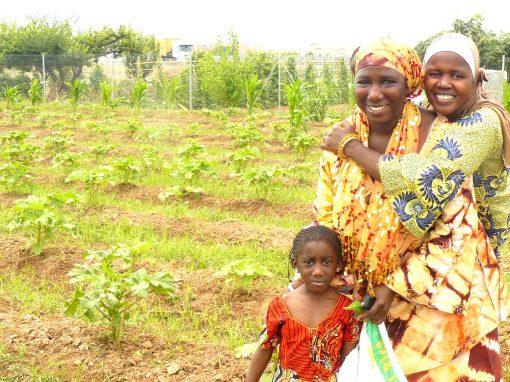 Mujeres africanas en la Huerta