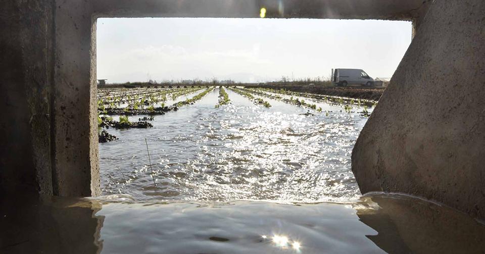 La Ruta del Agua de la Acequia Real del Júcar